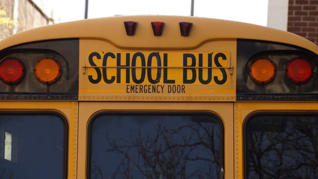 bus-school-school-bus-yellow-159658